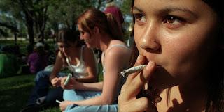 recaer marihuana