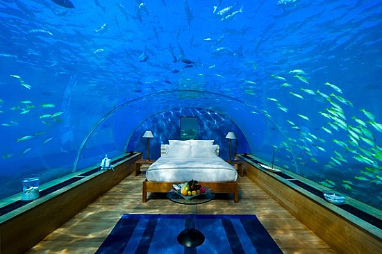 Under Water Hilton Maldives