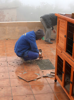 Replacing the loose tiles