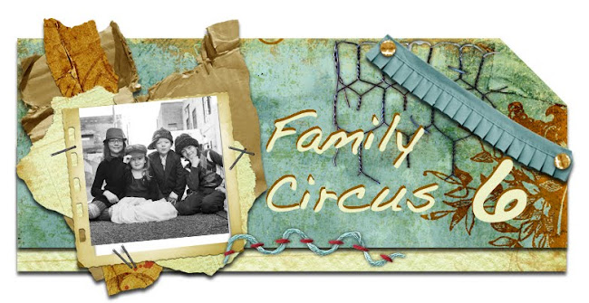 Family Circus 6