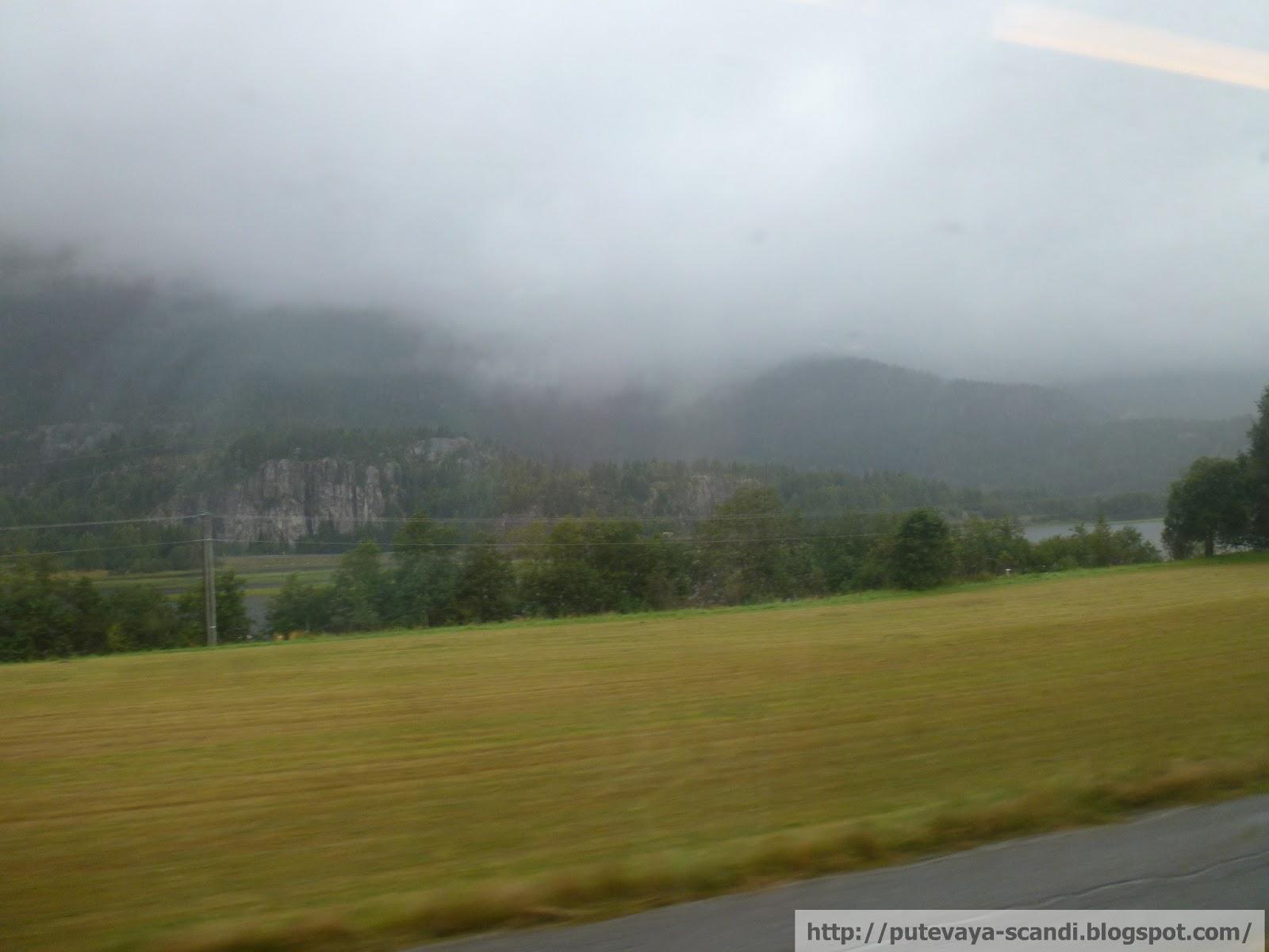 норвежское поле