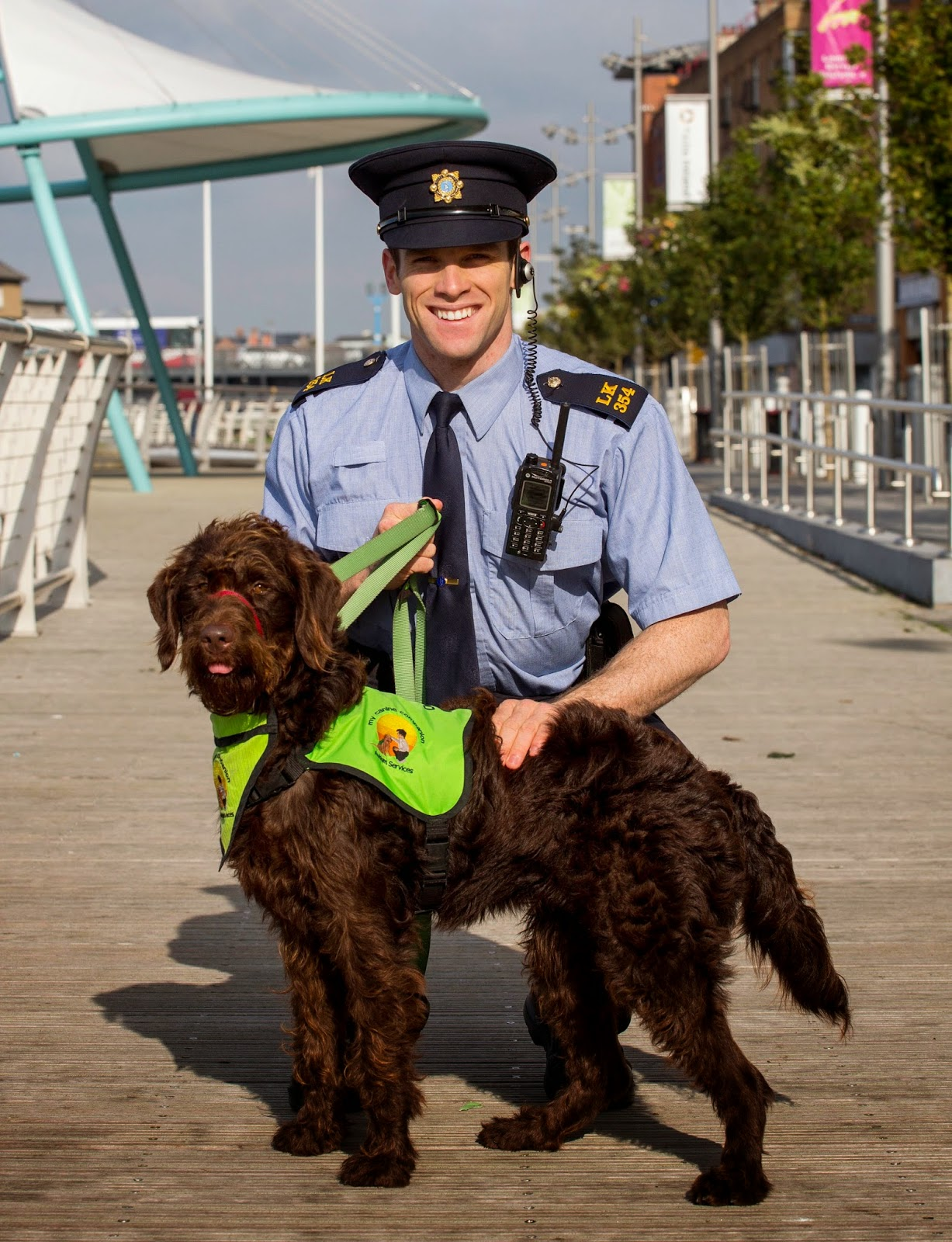 New campaign combats dog fouling in Limerick