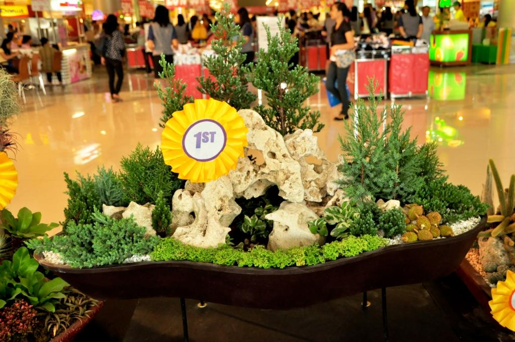 Dish Garden Designs at the 2nd Flora Mindanao at SM Davao Davao