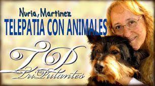 Nuria Martínez: Terapia y Comunicación Animal