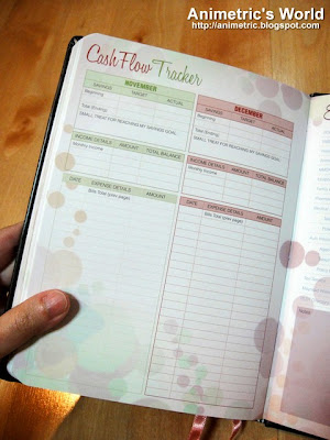 Belle de Jour Power Planner 2013