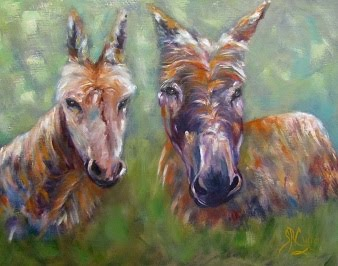 Mr. and Mrs. Don-Key, two sweet donkeys