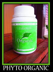 Phyto Organic Fiber WM RM38 EM RM40