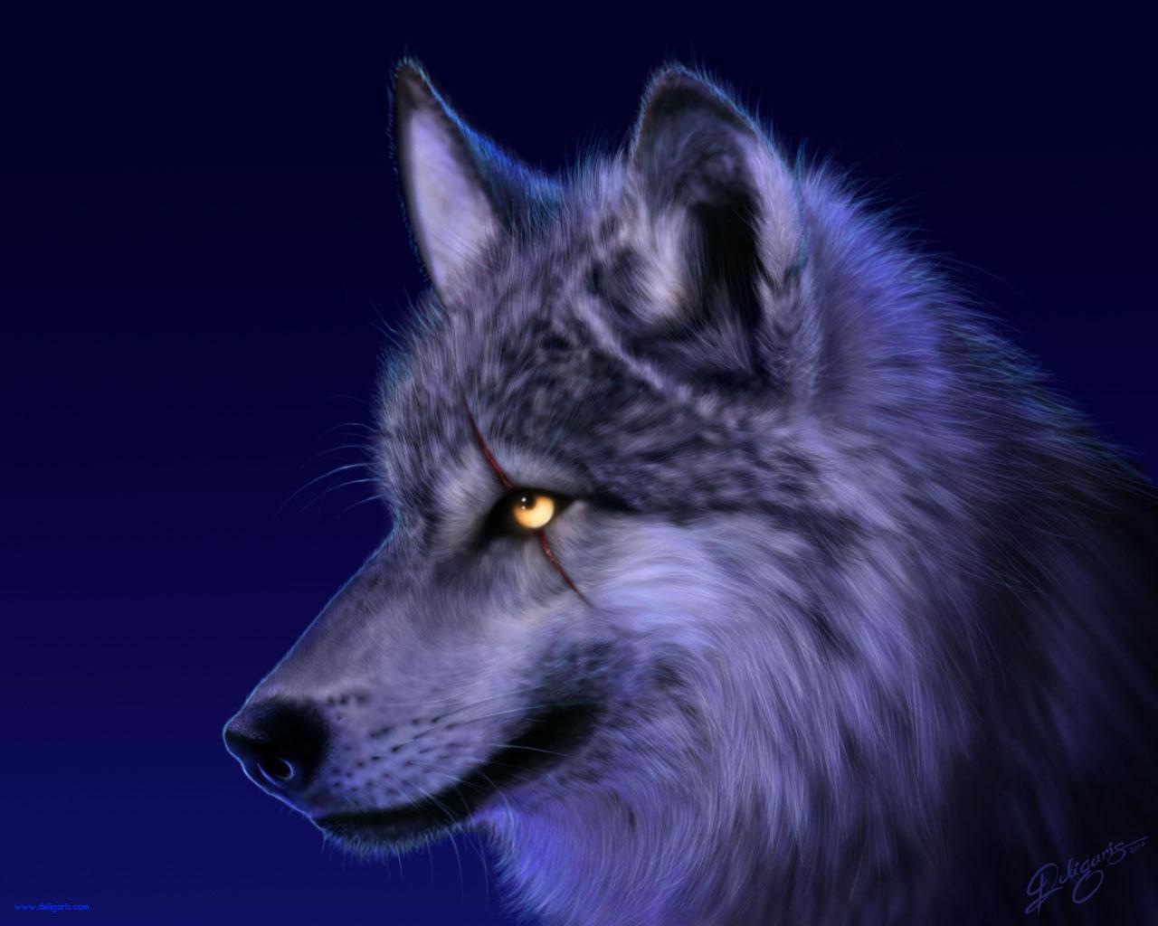 http://4.bp.blogspot.com/-KS5K5II1Z8I/TnSPu3zLYcI/AAAAAAAAALo/rzQKR6sRSfk/s1600/Wolf_wallpaper.jpg