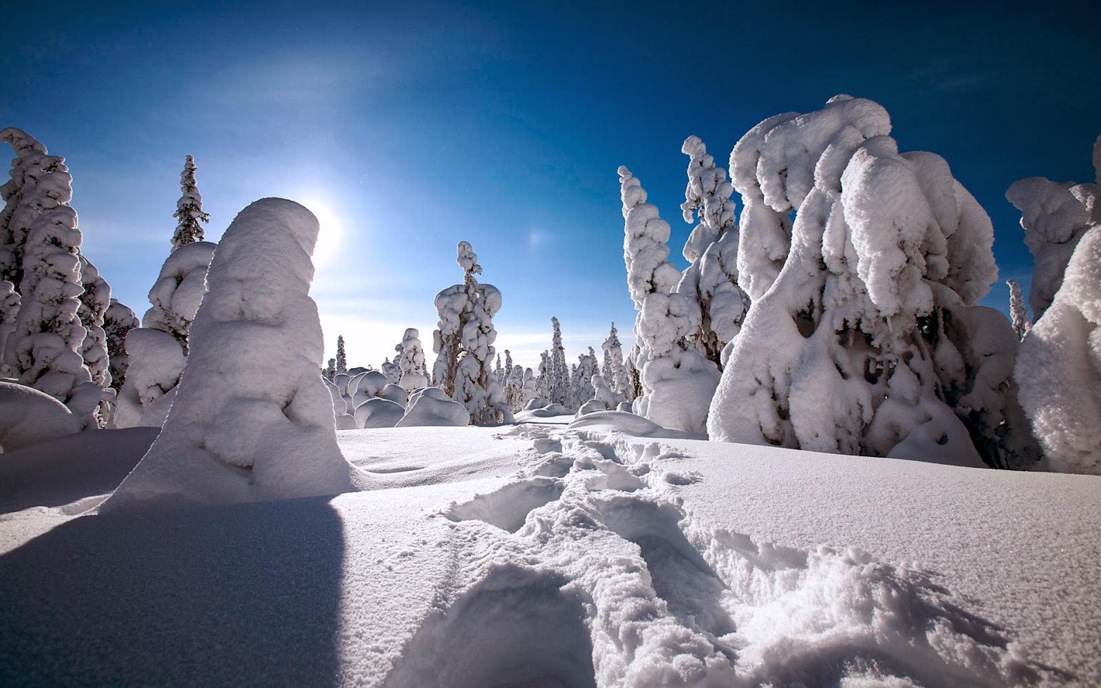 "<img src=""http://4.bp.blogspot.com/-KSxBRfTpnIA/Ut5GKpxrS4I/AAAAAAAAJik/zm21BNUWONE/s1600/winter-in-finland.jpg"" alt=""winter in finland"" />"
