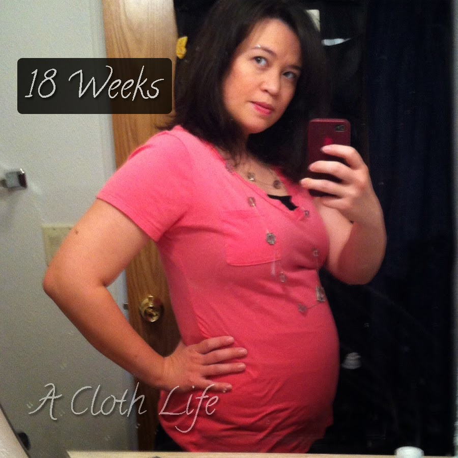 A Cloth Life: belly update 18 weeks