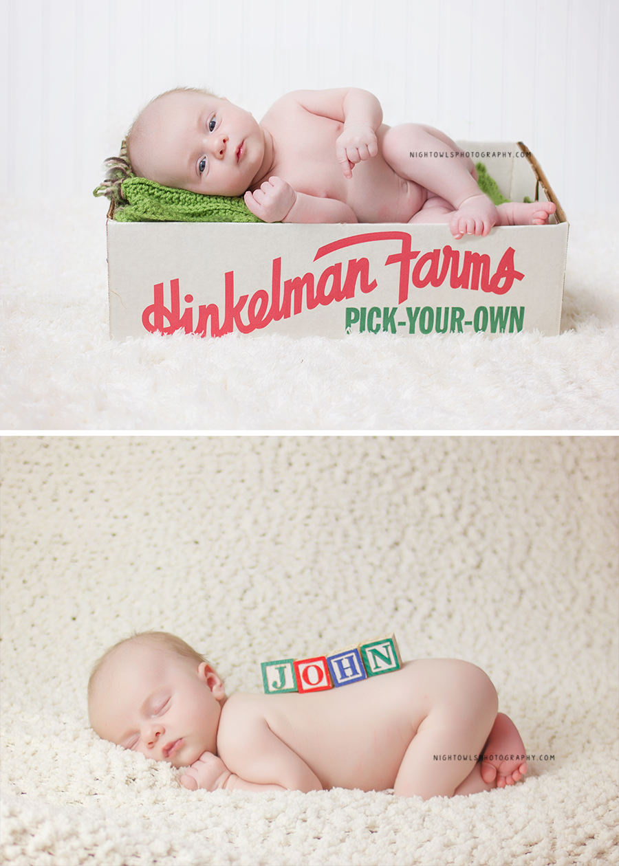 St. Joseph Michigan Professional Newborn Photographer