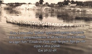 Anaconda Raksasa di sungai Abuna