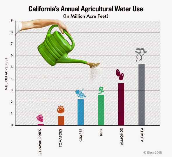 California's Annual Agricultural Water Use (In Million Acre Feet) - Source: Slate http://www.slate.com/content/dam/slate/articles/business/moneybox/2015/04/150417_SLATE_Chart_CaliWater02.jpg.CROP.original-original.jpg