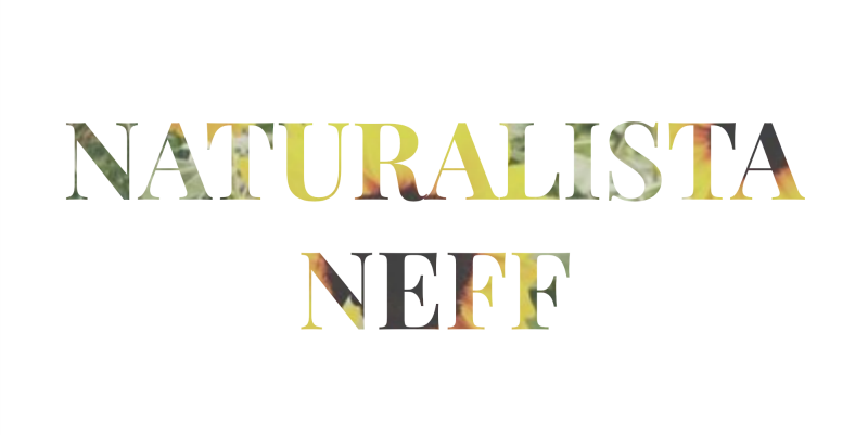 NaturalistaNeff