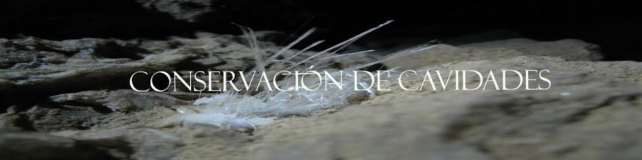 CONSERVACIÓN DE CAVIDADES
