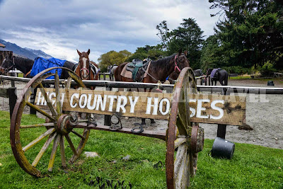 Glenorchy, high country horses, 魔戒拍攝地, 騎馬