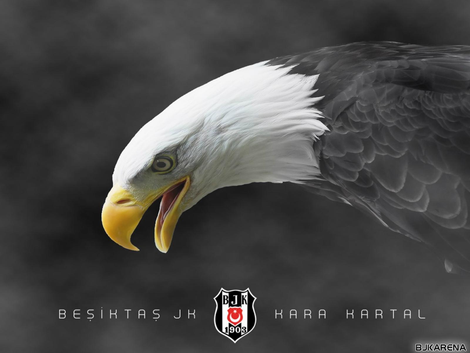 www.Vvallpaper.net bjk besiktas kara kartal logo amblem indir siyah beyaz 1600x1200 arena bjk arena Beşiktaş HD Logoları