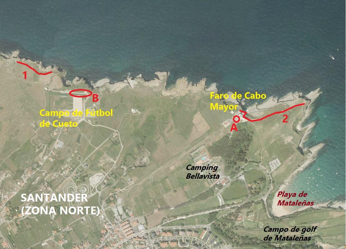 Donde ver aves en la Bahía de Santander