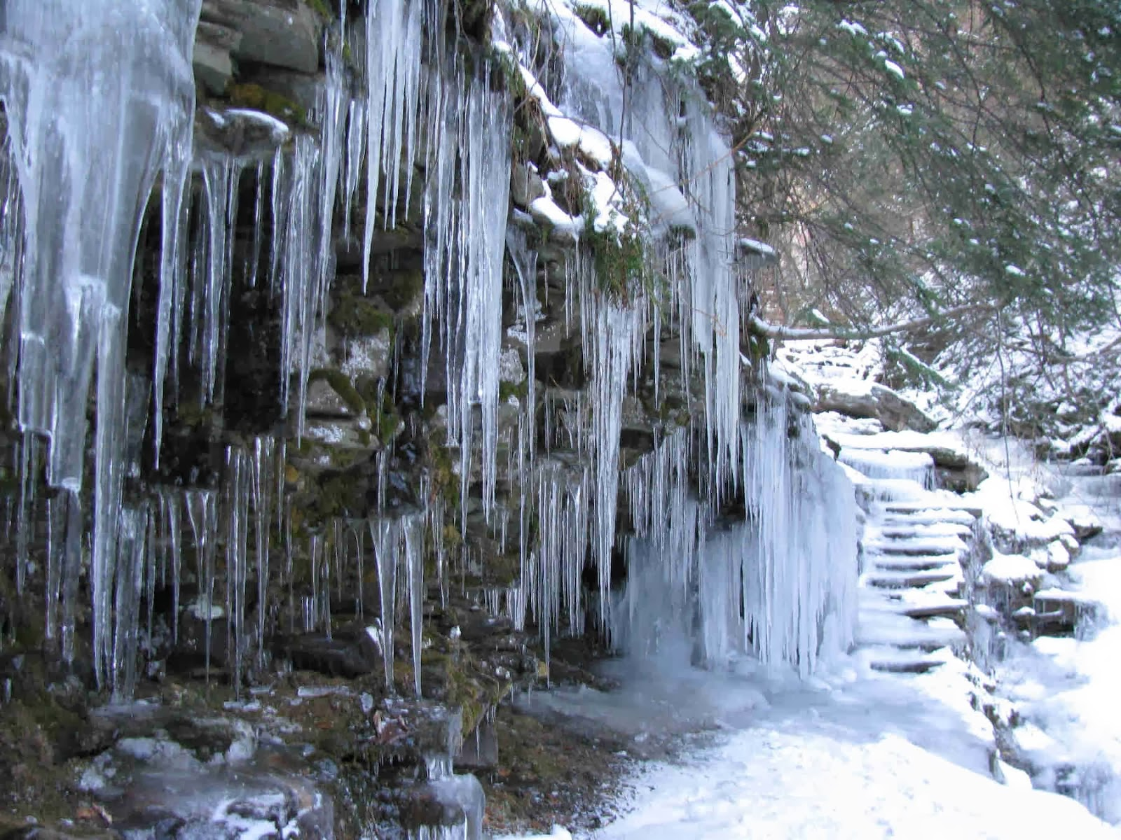 Ricketts Glen in Winter