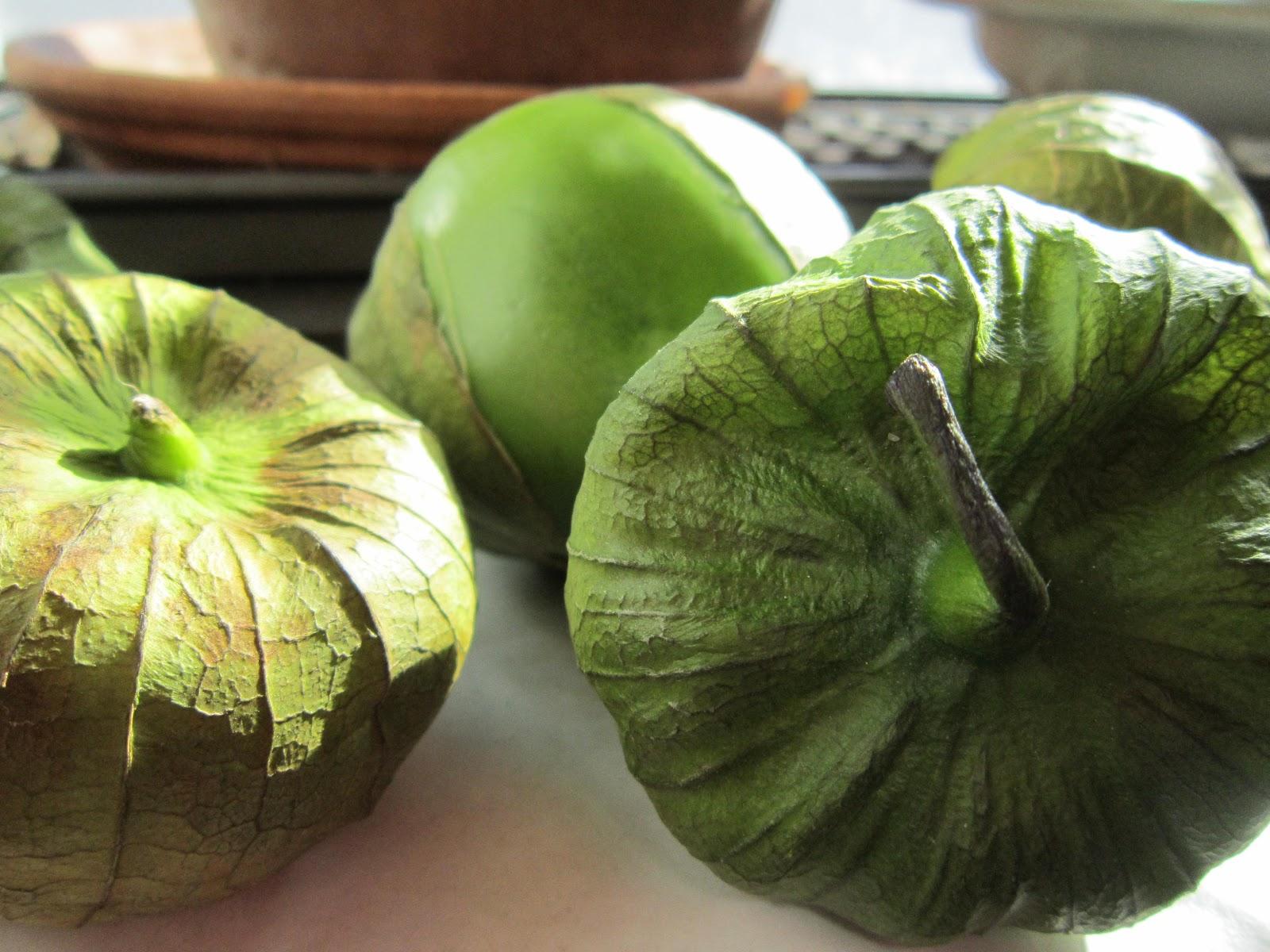 guacamole guacamole guacamole guacamole guacamole taquero tomatillo ...