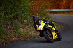 Fénix Directo motoristas y seguridad en las curvas - seguros de moto