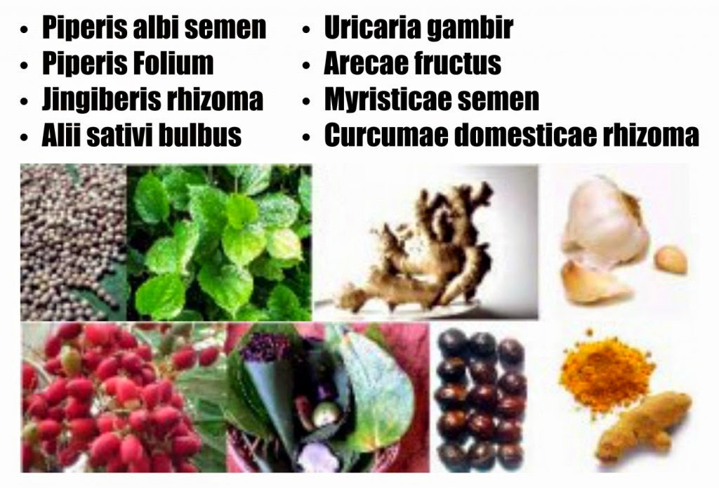 obat herbal resmi
