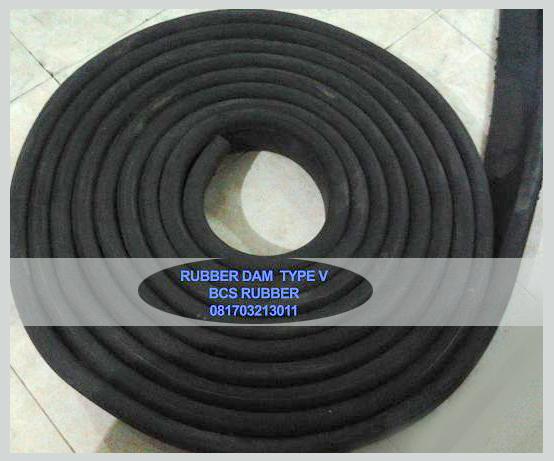 rubber dam v