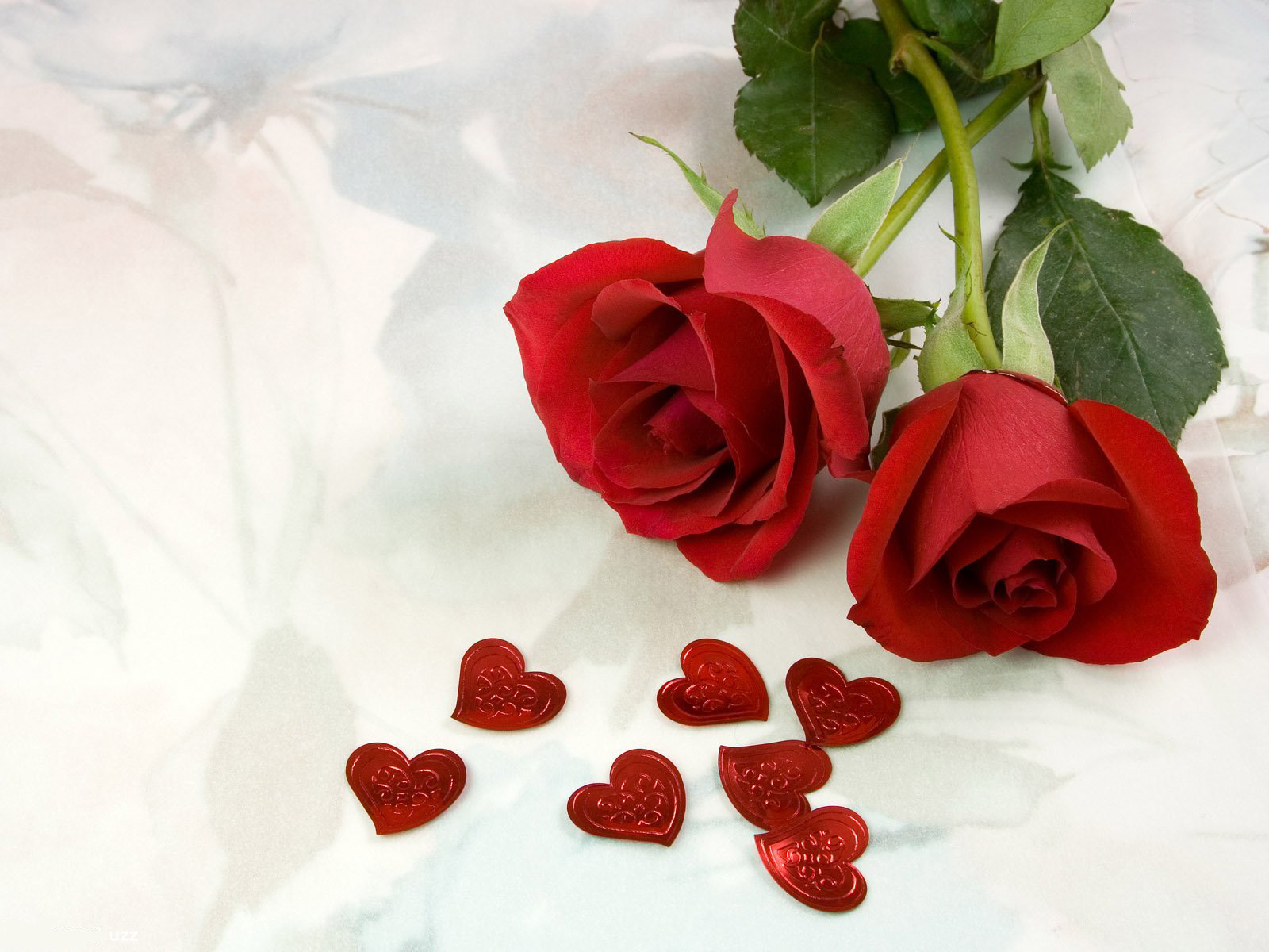 http://4.bp.blogspot.com/-KVBeyzL0hgQ/Tg6d7DSeLHI/AAAAAAAABGI/dGfEOGoWp8M/s1600/The-best-top-desktop-roses-wallpapers-hd-rose-wallpaper-1-two-red-roses.jpg