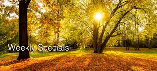 http://www.naturessunshine.com/us/products/specials/?sponsor=2863419-US