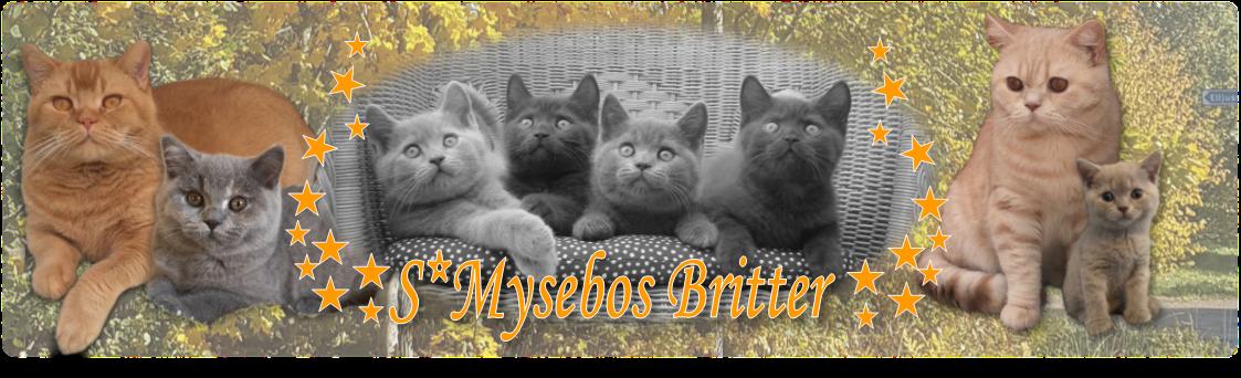 Mysebos Britter