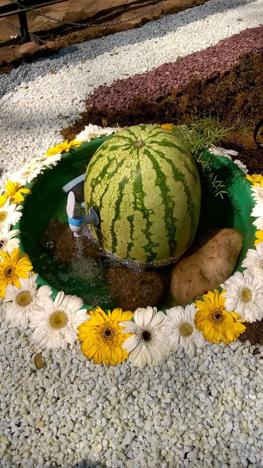 pune, gardens, water melon