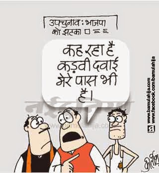 voter, bjp cartoon, uttarpradesh cartoon, election 2014 cartoons, cartoons on politics, indian political cartoon