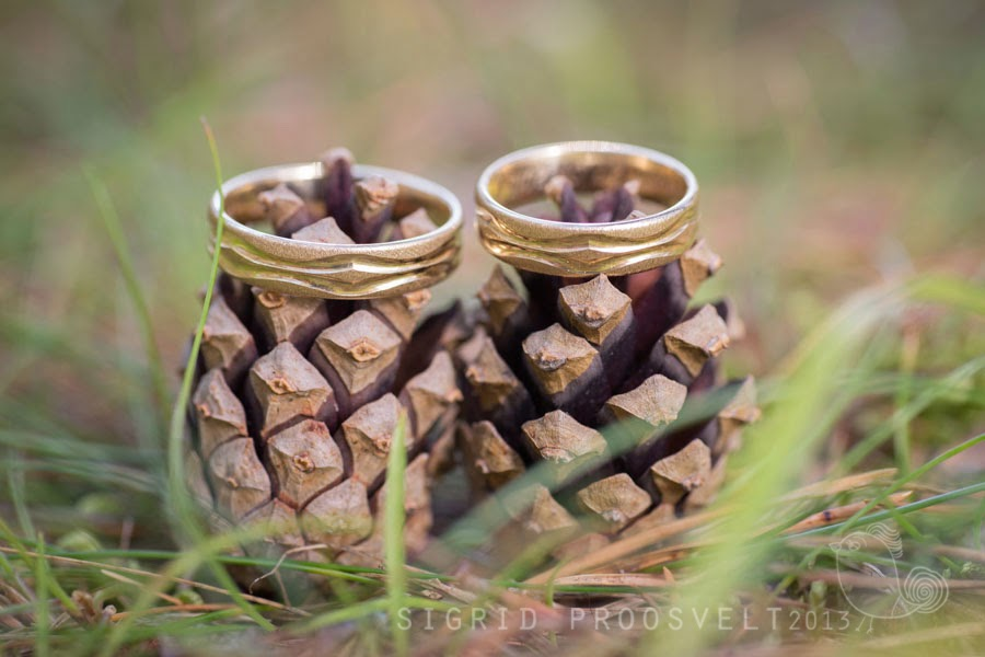 pruutpaar-sormused-fotopesa