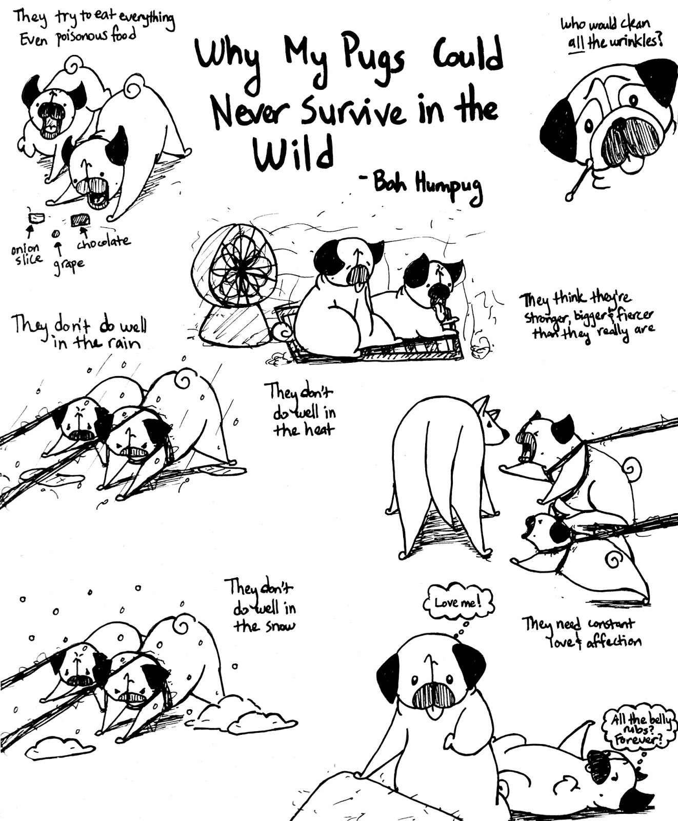 Disaster Survival Skills: Bah Humpug: Survival Skills
