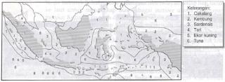 Peta persebaran ikan laut di Indonesia (Sumber: IPS Geografi untuk SLTP kelas 2, Erlangga)