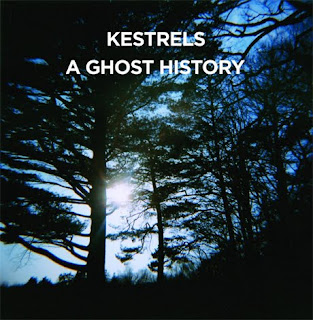 Kestrels - 'A Ghost History' CD Review / Live Photos From Pianos, NYC 8-10-12