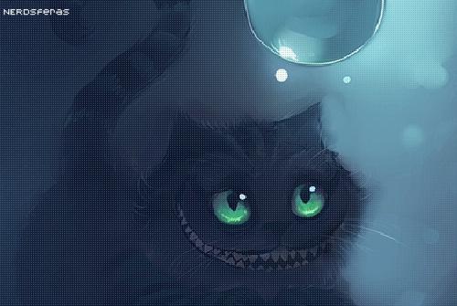 Por que as pessoas dizem que gatos possuem setes vidas?