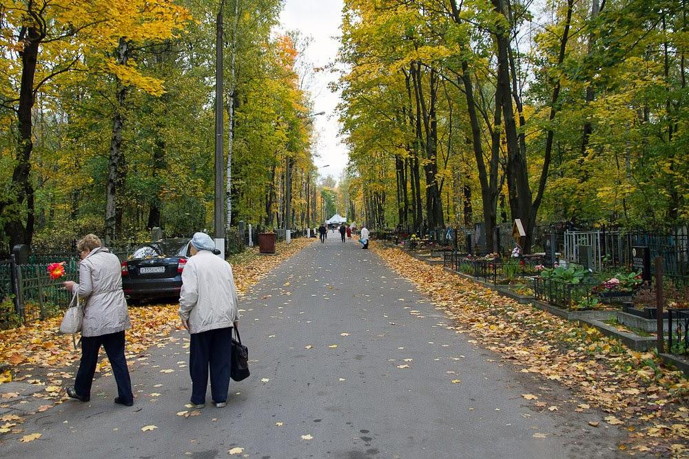 Аллея по дороге к могиле Виктора Цоя