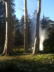 The geyser at Saint-Ferreol