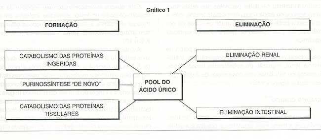 metabolismo de purinas acido urico alimentos recomendados contra la gota diclofenaco sodico sirve para la gota