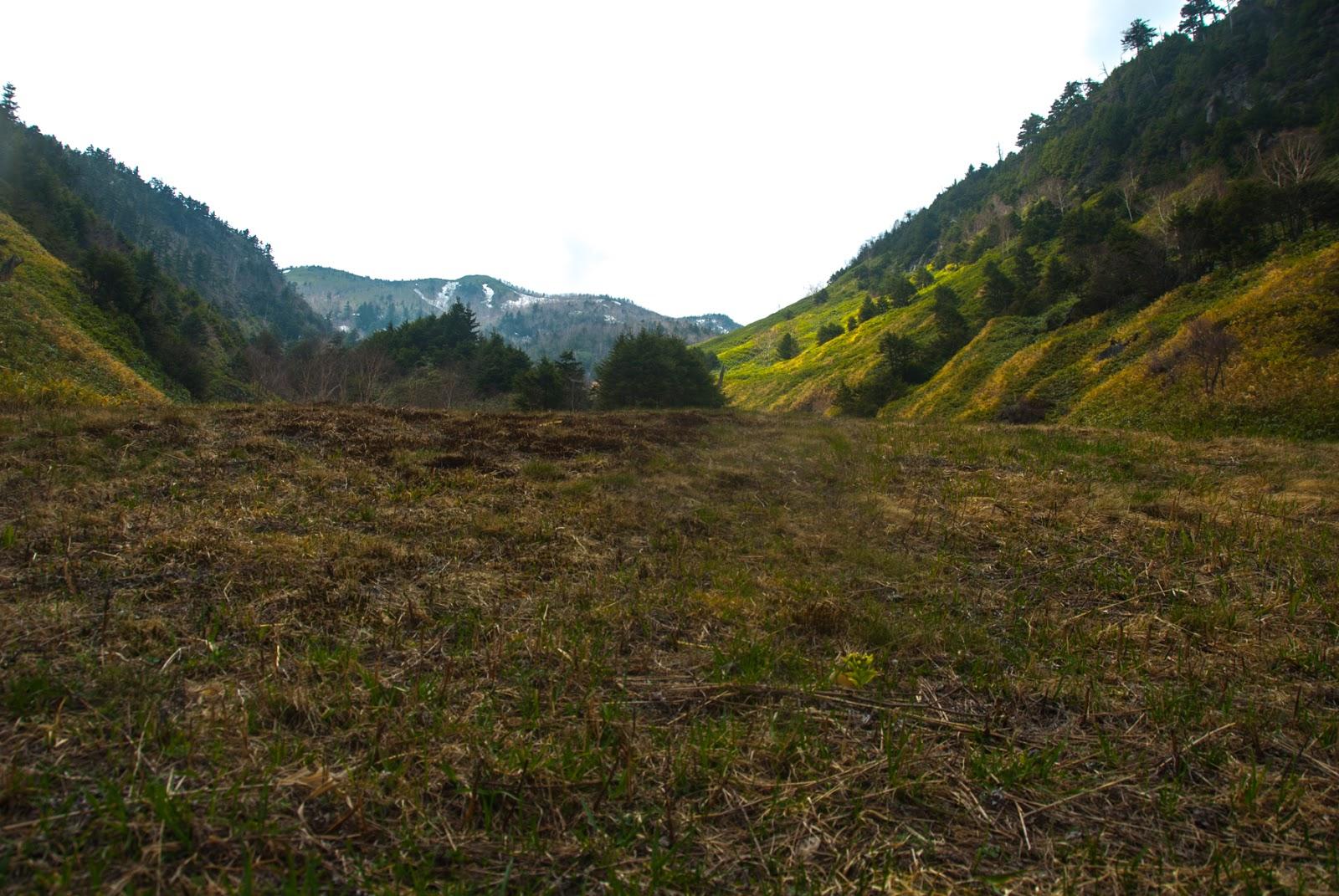 山の中の草むらで休憩