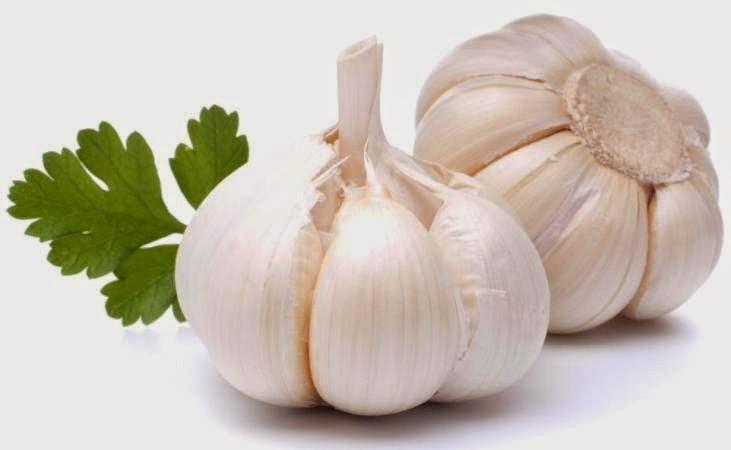 Bawang Putih - Cara Menghilangkan Bekas Jerawat Secara Cepat dan Alami