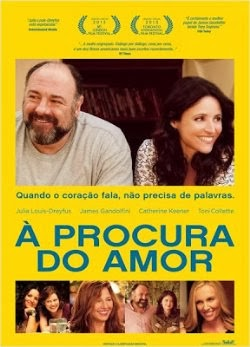 Baixar Filme À Procura do Amor Dual Audio