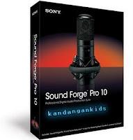Sony Sound Forge Pro 10  Keypatch Sonyforgetridowns