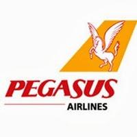 | Pegasus |