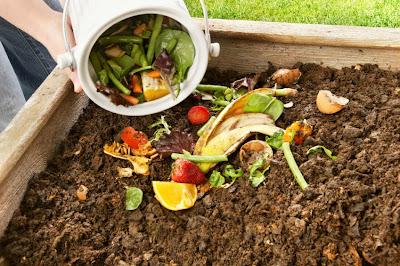 Compost para principiantes
