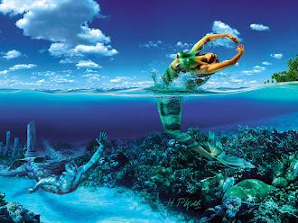 Nadando e mergulhando nas poesias...