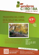 PRIMAVERA DEL COBRE