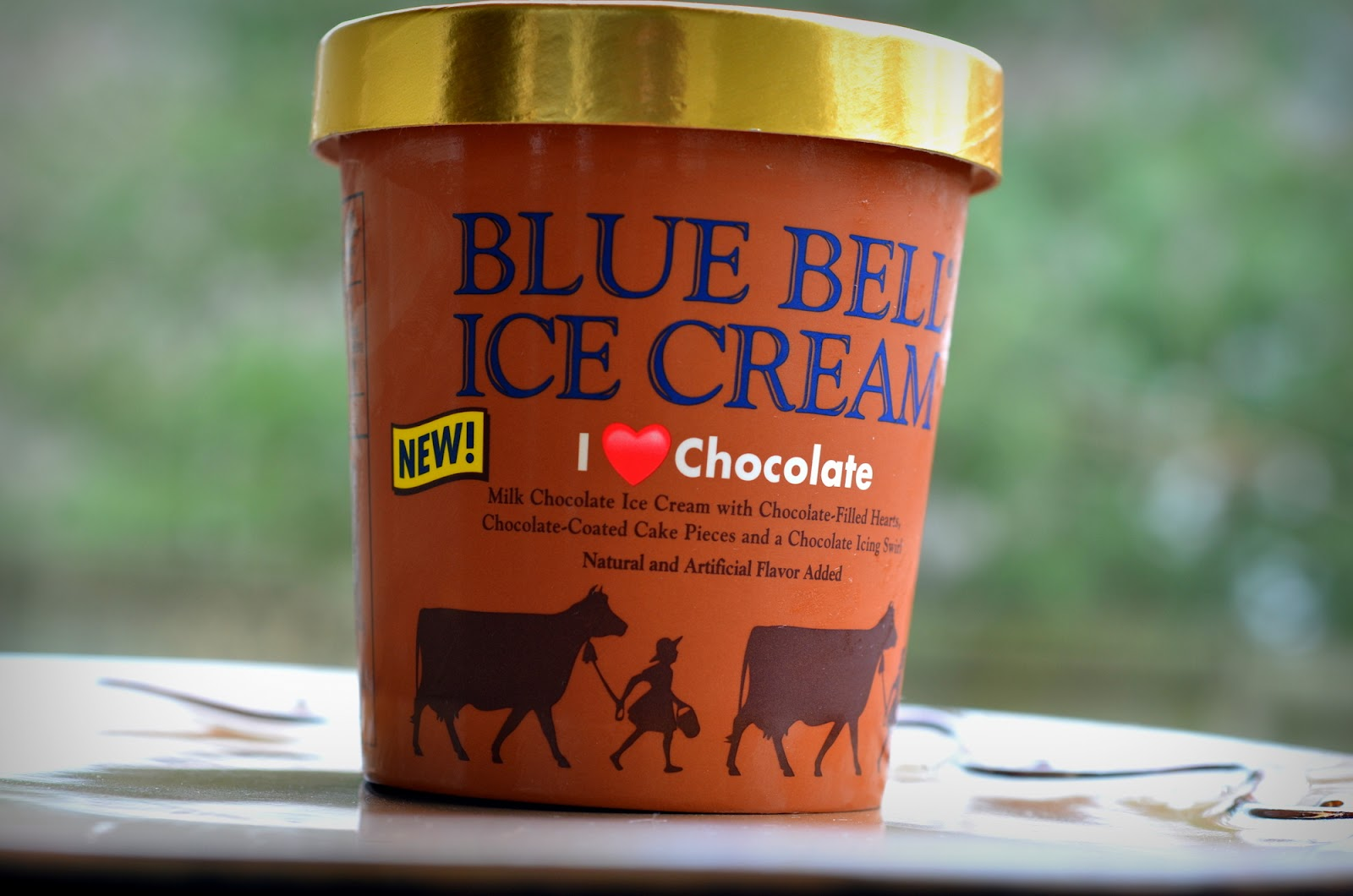 food and ice cream recipes REVIEW Blue Bell I Chocolate