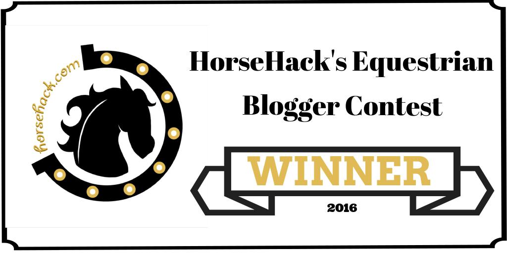 horse hack banner